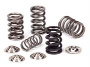 SUPERTECH: VALVE SPRING KIT: EVO 1-9